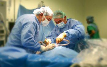 Año récord: 77 santafesinos donaron sus órganos en 2017